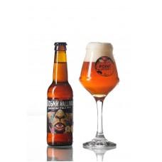 Пиво Відьми Halliwel АPA Ale Point Brewery напівтемне нефільтроване 4,5° 0,33л