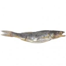 Рыба к пиву Судак вяленый 50г