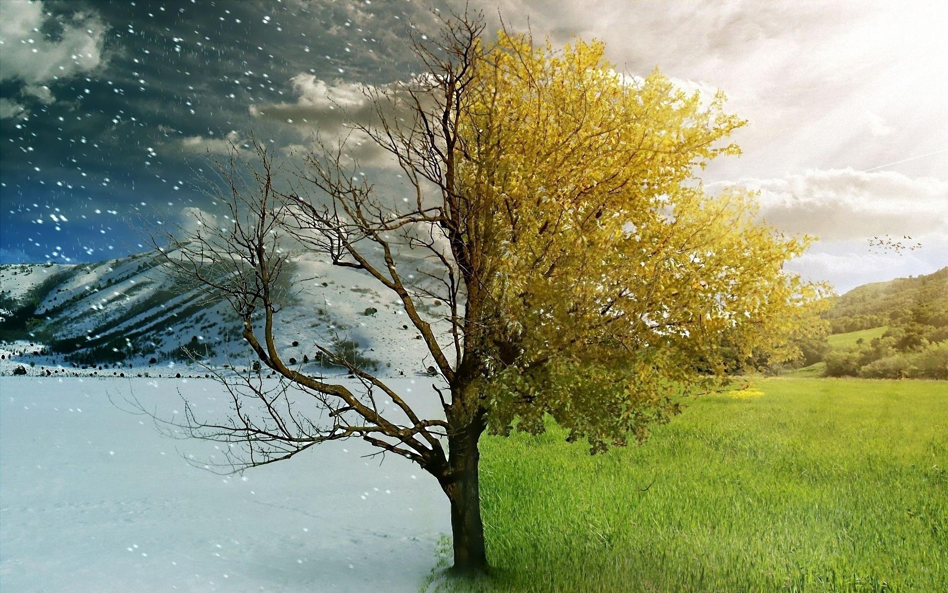 Сретение: встреча Зимы и Лета. История и традиции